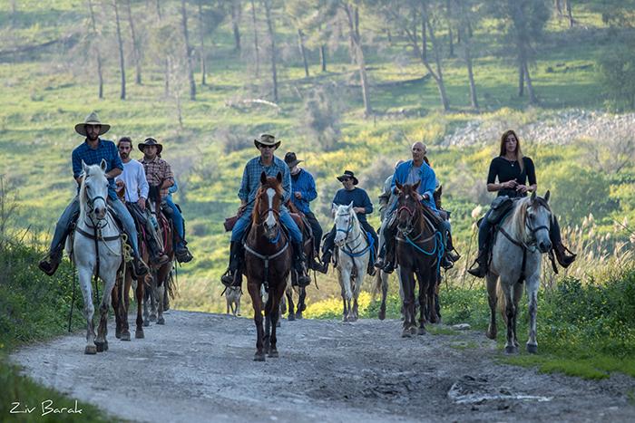 סוסים חוות דובי הובלת בקר -8318