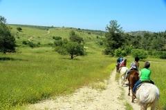trail rides 9