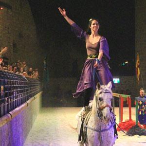 סוסים-בהפקות-מיוחדות